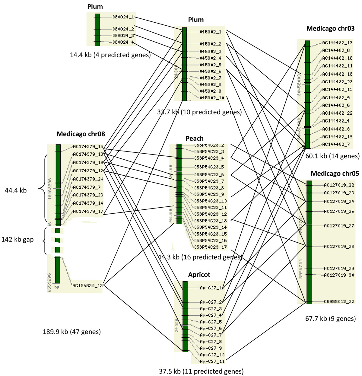 http://static-content.springer.com/image/art%3A10.1186%2F1471-2164-10-76/MediaObjects/12864_2008_Article_1960_Fig2_HTML.jpg