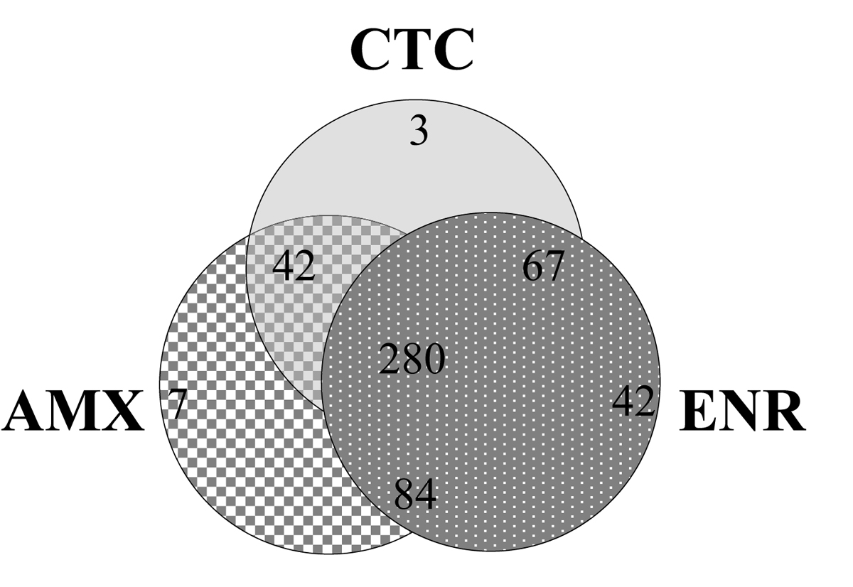 http://static-content.springer.com/image/art%3A10.1186%2F1471-2164-10-S2-S4/MediaObjects/12864_2009_Article_2552_Fig2_HTML.jpg