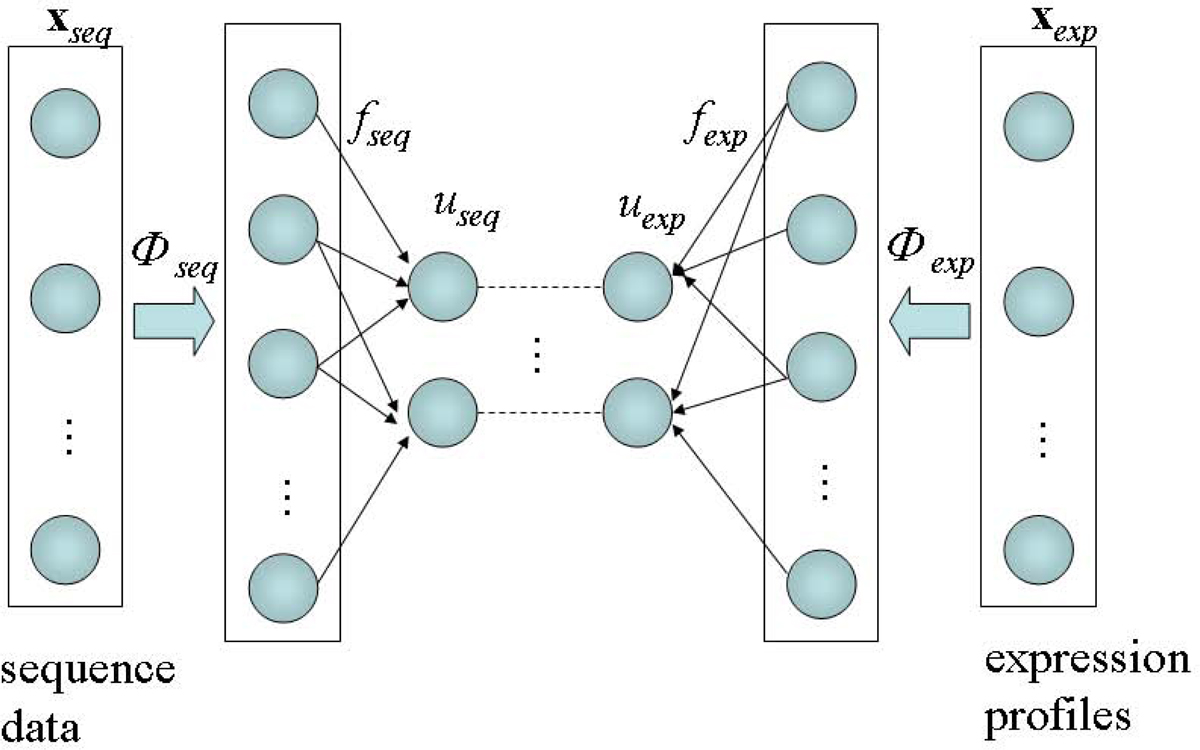 http://static-content.springer.com/image/art%3A10.1186%2F1471-2164-10-S3-S29/MediaObjects/12864_2009_Article_2587_Fig1_HTML.jpg
