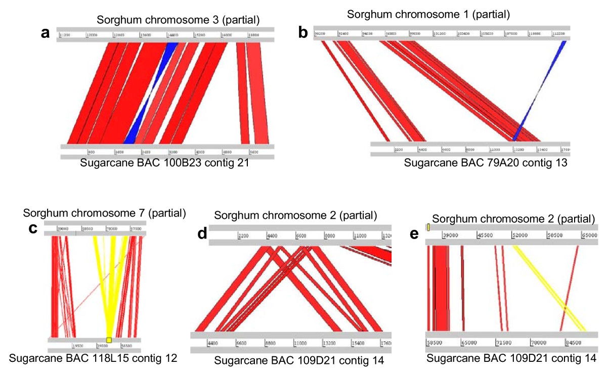 http://static-content.springer.com/image/art%3A10.1186%2F1471-2164-11-261/MediaObjects/12864_2009_Article_2855_Fig3_HTML.jpg