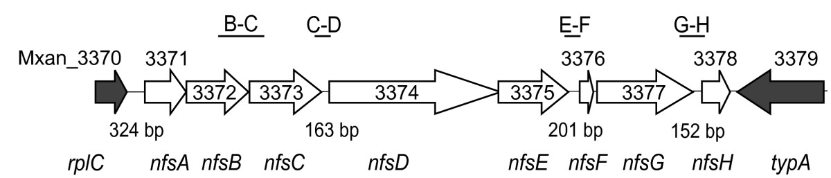 http://static-content.springer.com/image/art%3A10.1186%2F1471-2164-11-264/MediaObjects/12864_2009_Article_2858_Fig3_HTML.jpg