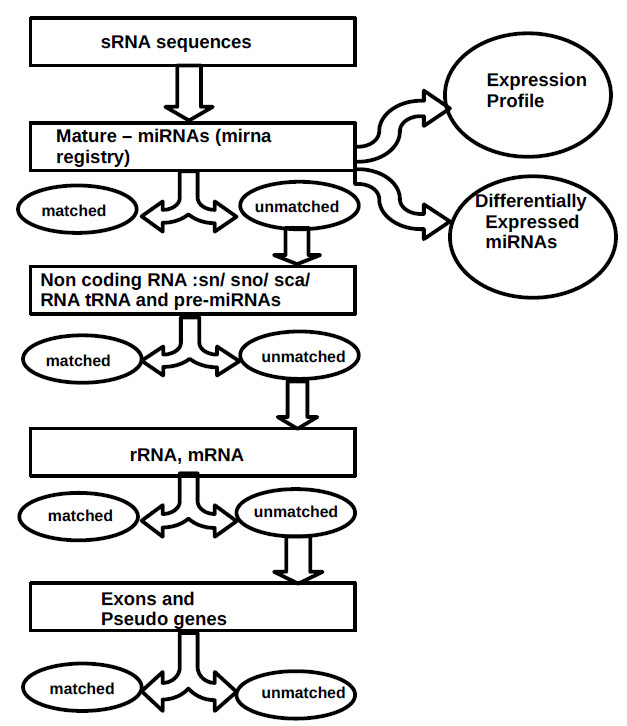 http://static-content.springer.com/image/art%3A10.1186%2F1471-2164-11-288/MediaObjects/12864_2009_Article_2882_Fig1_HTML.jpg