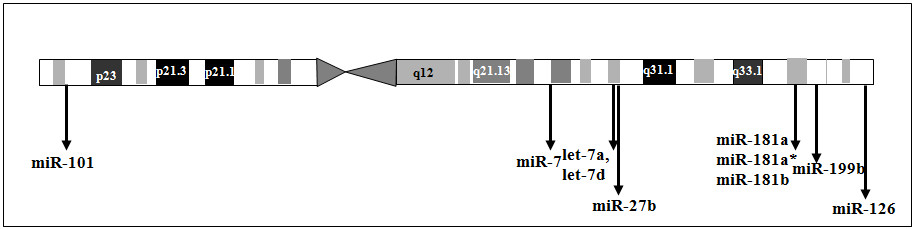 http://static-content.springer.com/image/art%3A10.1186%2F1471-2164-11-288/MediaObjects/12864_2009_Article_2882_Fig8_HTML.jpg