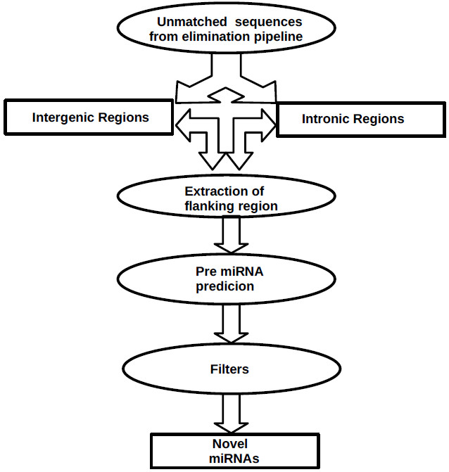 http://static-content.springer.com/image/art%3A10.1186%2F1471-2164-11-288/MediaObjects/12864_2009_Article_2882_Fig9_HTML.jpg
