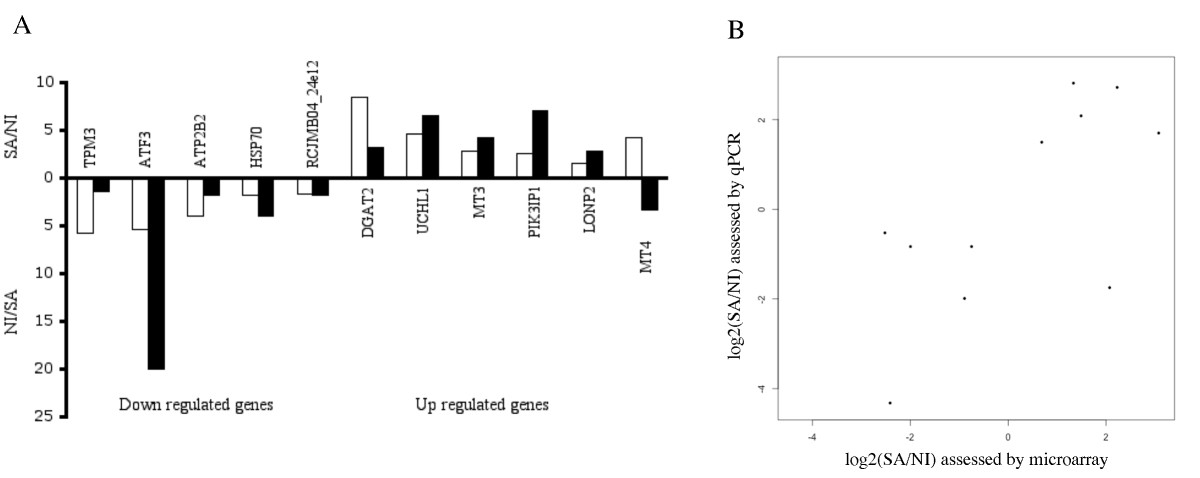 http://static-content.springer.com/image/art%3A10.1186%2F1471-2164-11-344/MediaObjects/12864_2009_Article_2938_Fig4_HTML.jpg