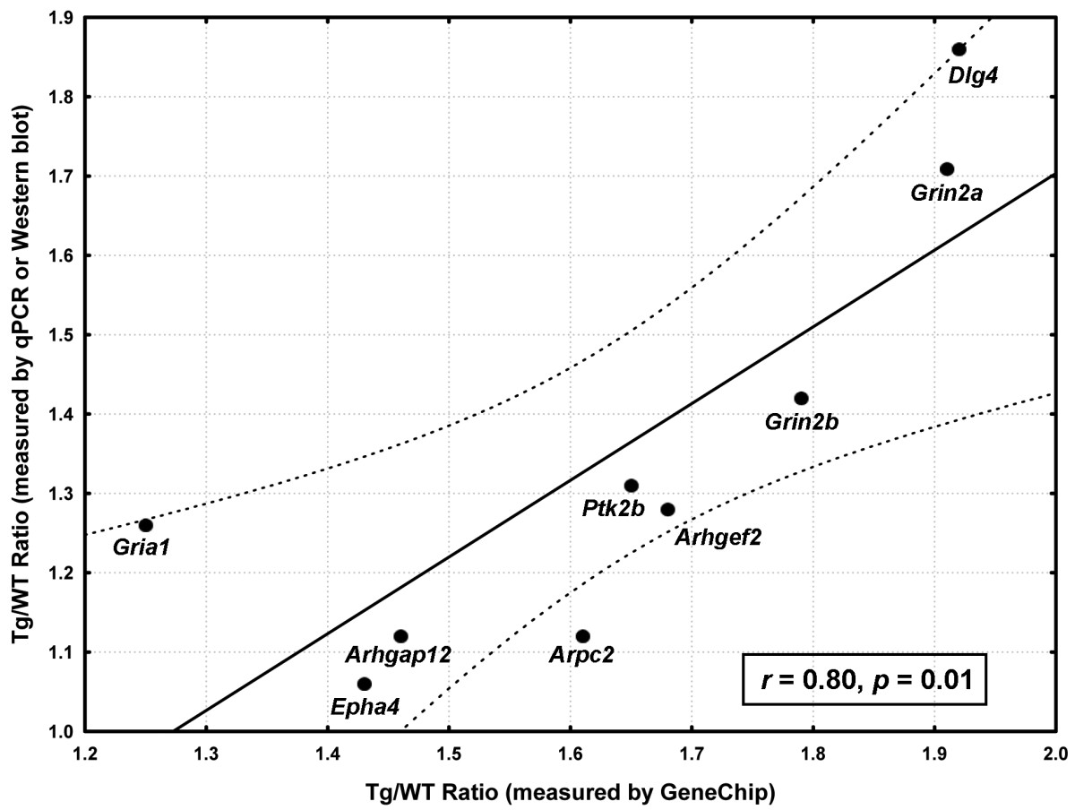 http://static-content.springer.com/image/art%3A10.1186%2F1471-2164-11-360/MediaObjects/12864_2010_Article_2954_Fig5_HTML.jpg