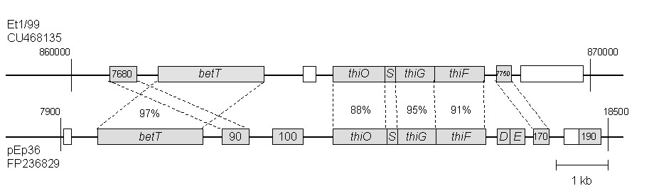 http://static-content.springer.com/image/art%3A10.1186%2F1471-2164-11-393/MediaObjects/12864_2009_Article_2987_Fig3_HTML.jpg