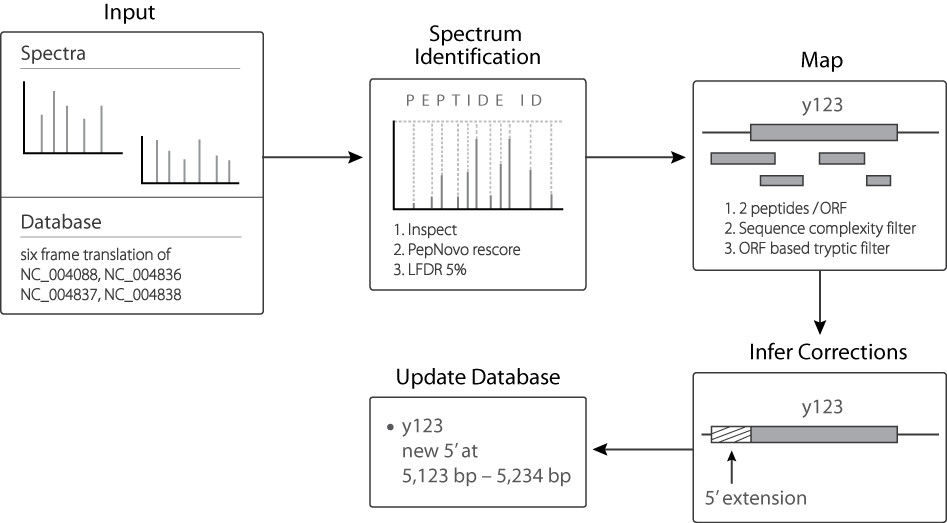http://static-content.springer.com/image/art%3A10.1186%2F1471-2164-11-460/MediaObjects/12864_2010_Article_3054_Fig1_HTML.jpg