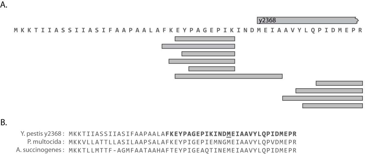 http://static-content.springer.com/image/art%3A10.1186%2F1471-2164-11-460/MediaObjects/12864_2010_Article_3054_Fig3_HTML.jpg