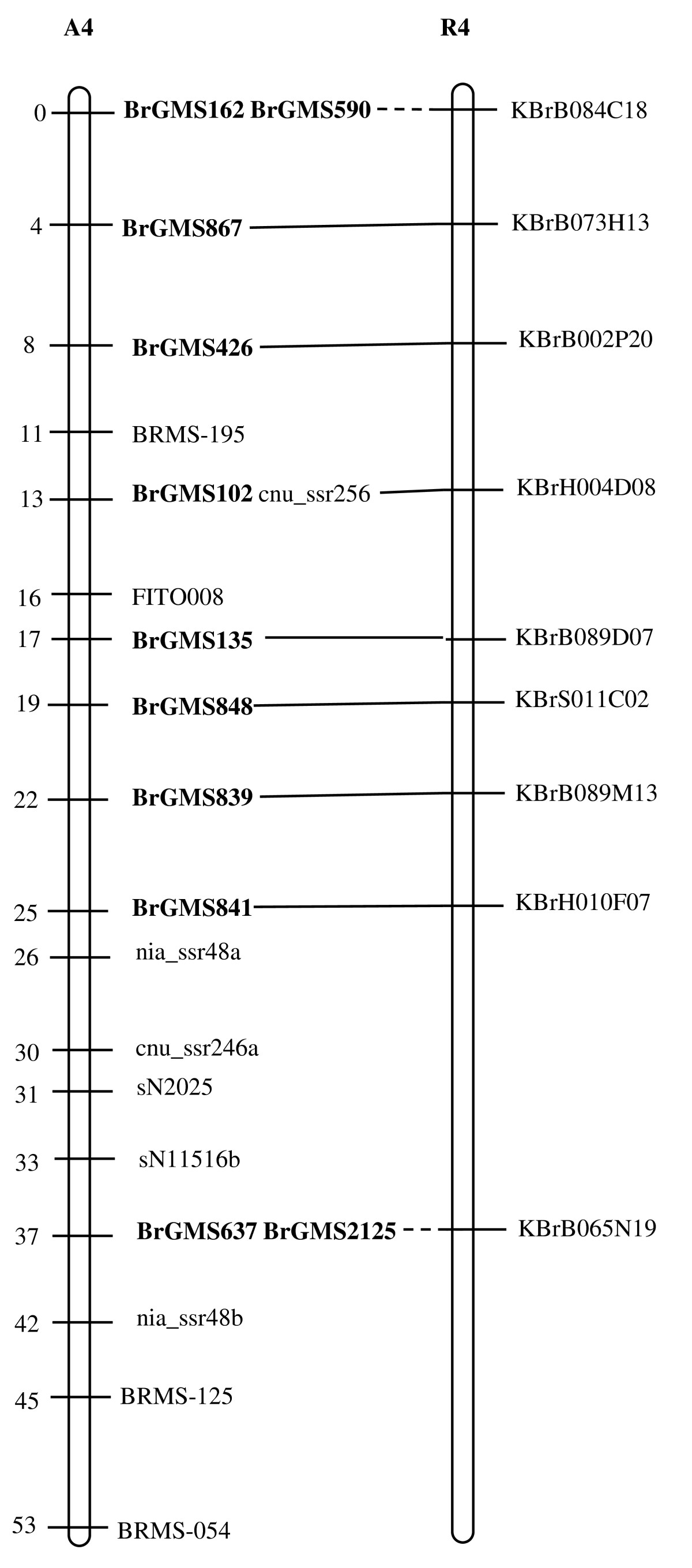 http://static-content.springer.com/image/art%3A10.1186%2F1471-2164-11-594/MediaObjects/12864_2010_Article_3291_Fig4_HTML.jpg