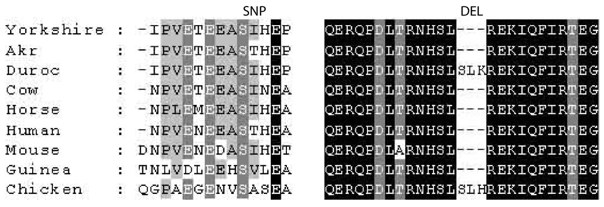 http://static-content.springer.com/image/art%3A10.1186%2F1471-2164-11-699/MediaObjects/12864_2010_Article_3396_Fig4_HTML.jpg