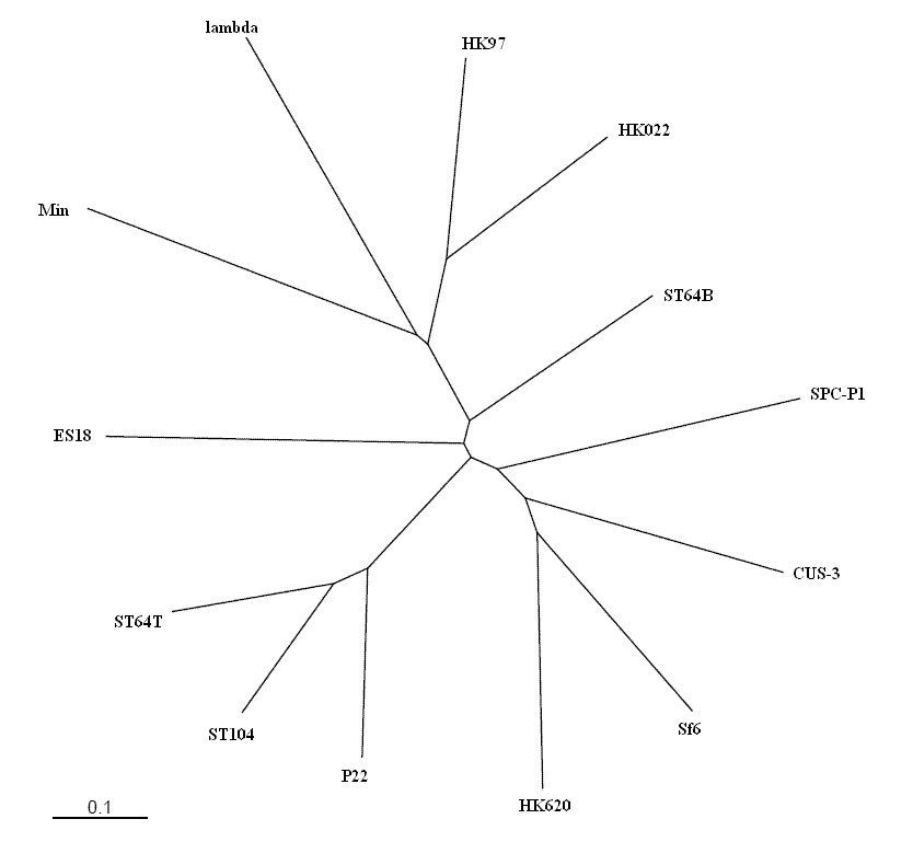 http://static-content.springer.com/image/art%3A10.1186%2F1471-2164-11-729/MediaObjects/12864_2010_Article_3426_Fig2_HTML.jpg