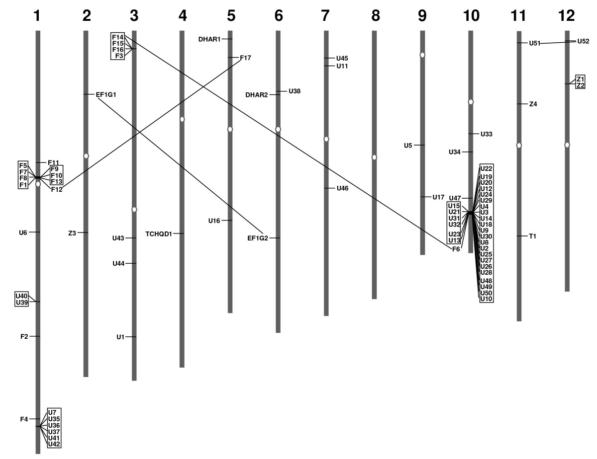 http://static-content.springer.com/image/art%3A10.1186%2F1471-2164-11-73/MediaObjects/12864_2009_Article_2667_Fig2_HTML.jpg
