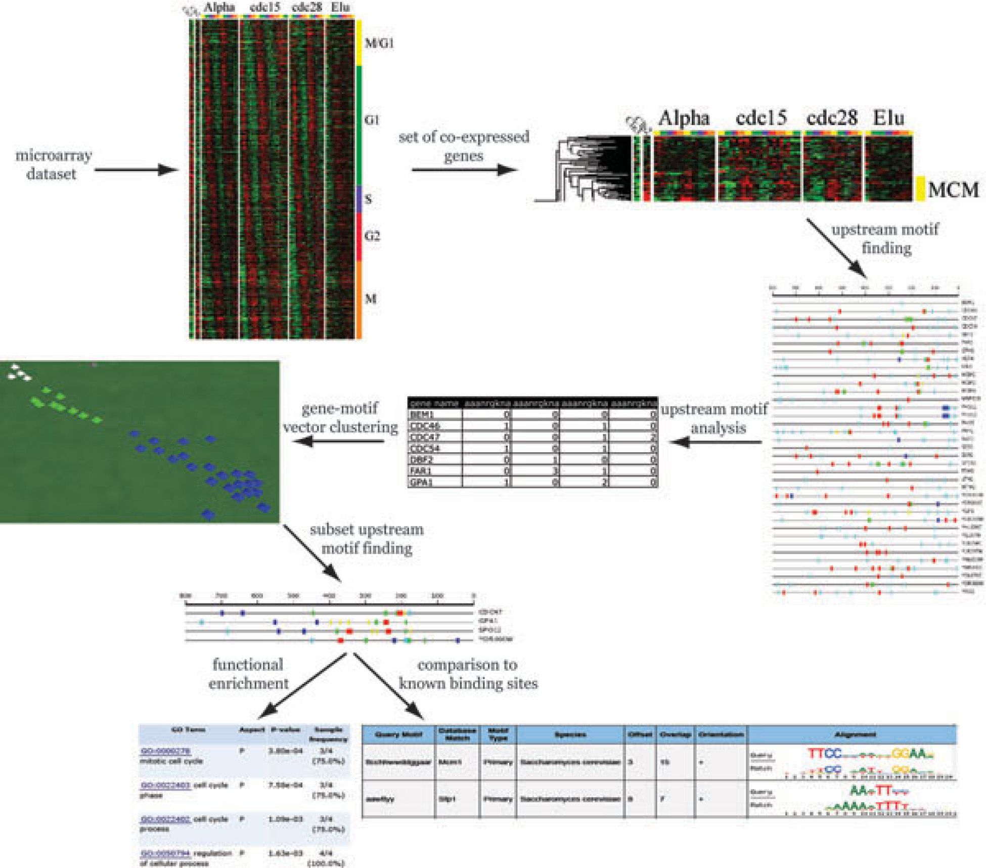 http://static-content.springer.com/image/art%3A10.1186%2F1471-2164-11-S2-S8/MediaObjects/12864_2010_Article_3435_Fig1_HTML.jpg