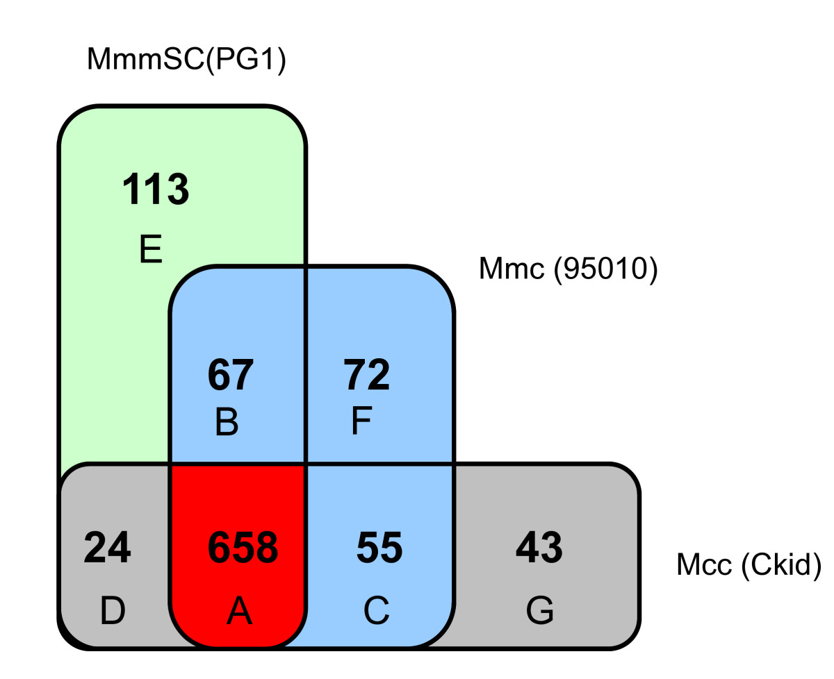 http://static-content.springer.com/image/art%3A10.1186%2F1471-2164-12-114/MediaObjects/12864_2010_3253_Fig7_HTML.jpg