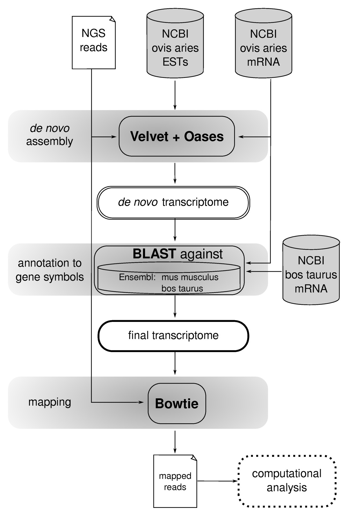 http://static-content.springer.com/image/art%3A10.1186%2F1471-2164-12-158/MediaObjects/12864_2010_3292_Fig2_HTML.jpg