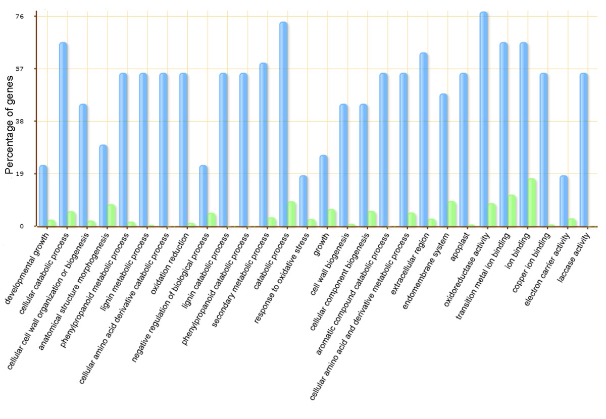 http://static-content.springer.com/image/art%3A10.1186%2F1471-2164-12-307/MediaObjects/12864_2011_3456_Fig2_HTML.jpg