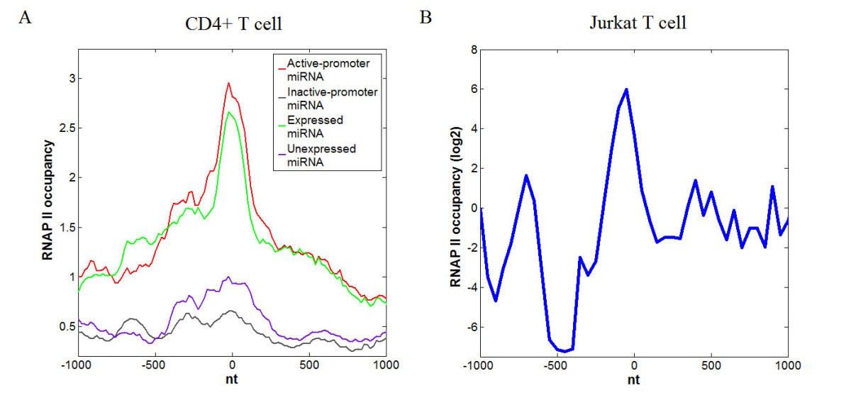 http://static-content.springer.com/image/art%3A10.1186%2F1471-2164-12-329/MediaObjects/12864_2010_3452_Fig4_HTML.jpg