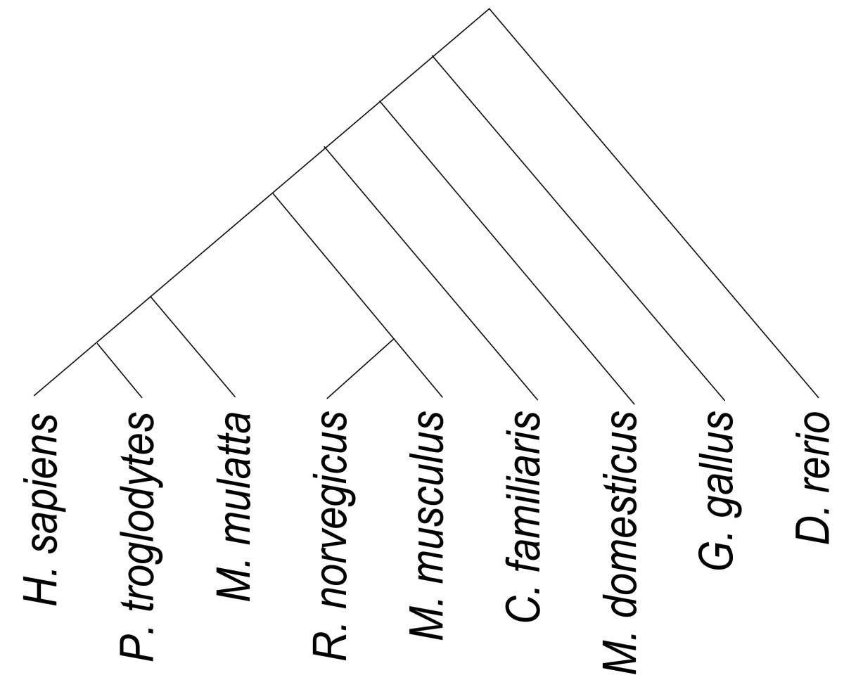 http://static-content.springer.com/image/art%3A10.1186%2F1471-2164-12-415/MediaObjects/12864_2011_3574_Fig3_HTML.jpg