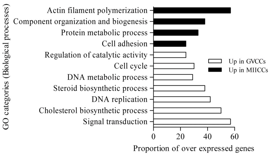 http://static-content.springer.com/image/art%3A10.1186%2F1471-2164-12-57/MediaObjects/12864_2010_3229_Fig13_HTML.jpg