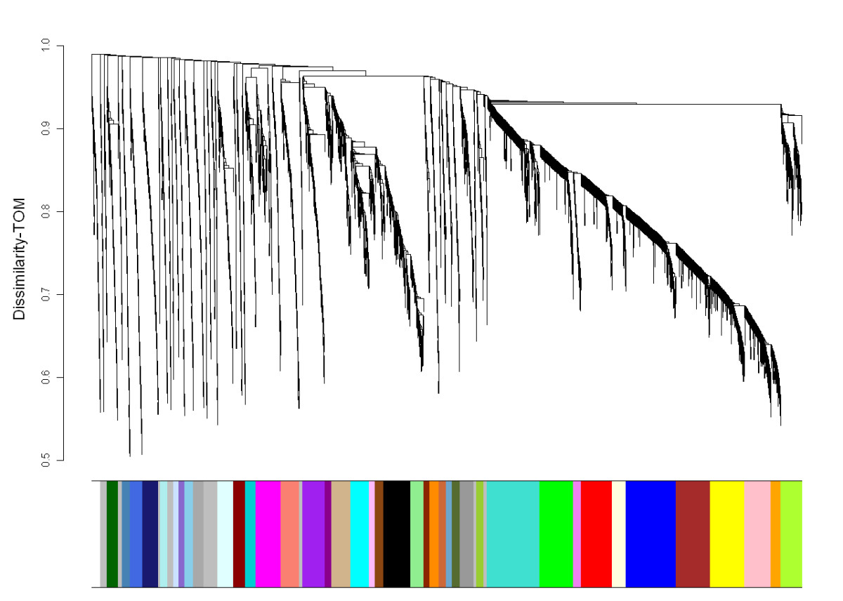 http://static-content.springer.com/image/art%3A10.1186%2F1471-2164-12-607/MediaObjects/12864_2011_3816_Fig2_HTML.jpg