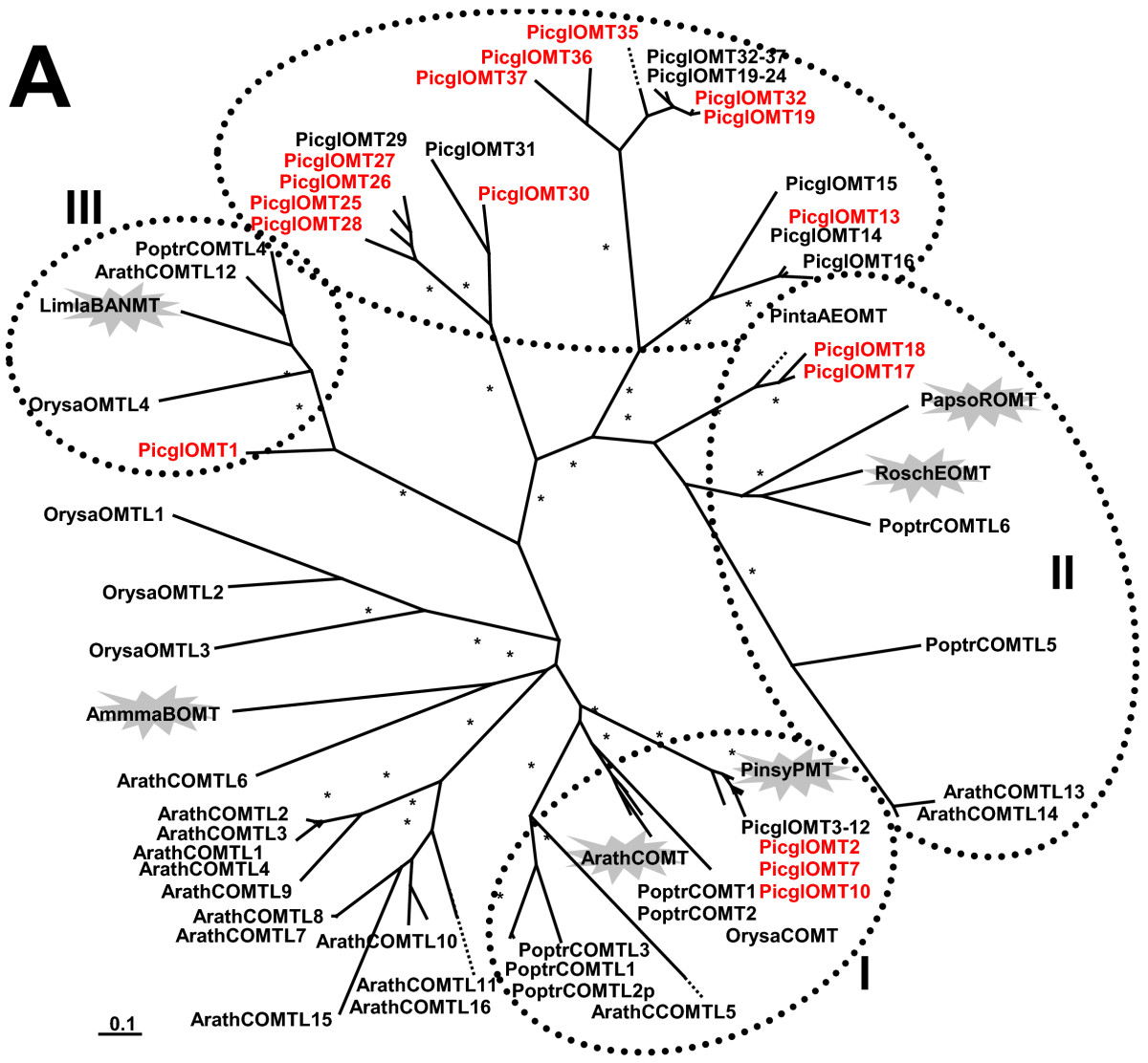 http://static-content.springer.com/image/art%3A10.1186%2F1471-2164-12-608/MediaObjects/12864_2011_3868_Fig10_HTML.jpg