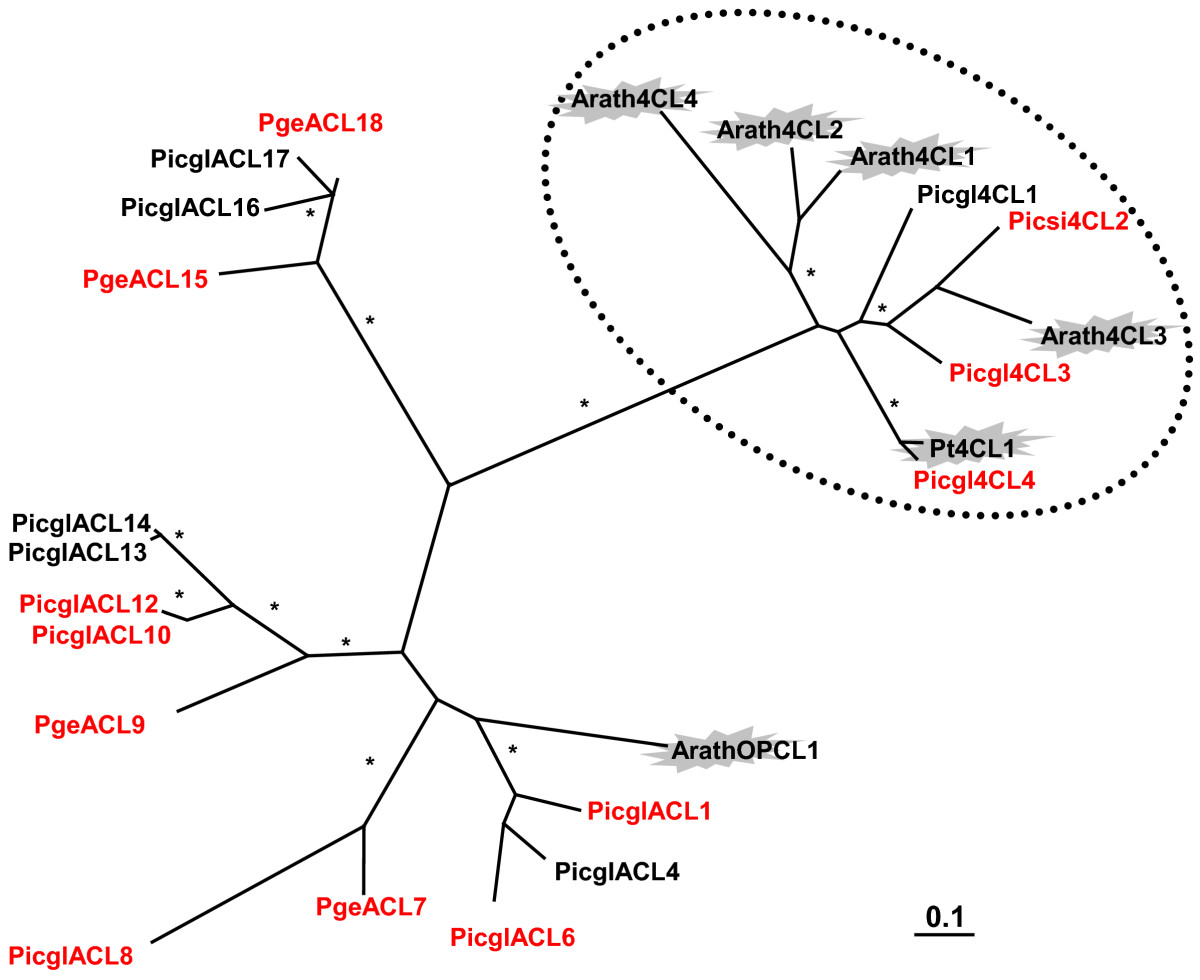 http://static-content.springer.com/image/art%3A10.1186%2F1471-2164-12-608/MediaObjects/12864_2011_3868_Fig7_HTML.jpg