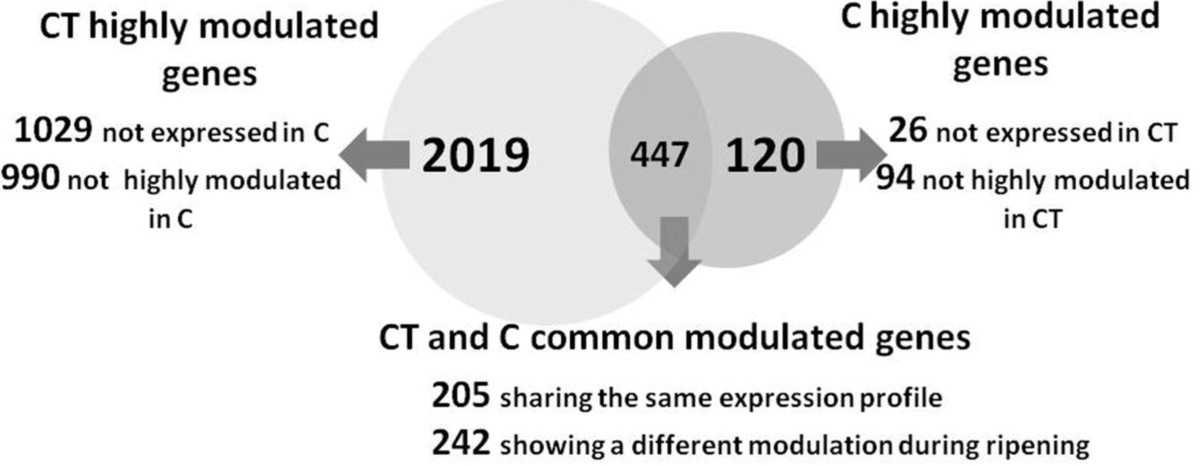 http://static-content.springer.com/image/art%3A10.1186%2F1471-2164-12-631/MediaObjects/12864_2011_3855_Fig3_HTML.jpg