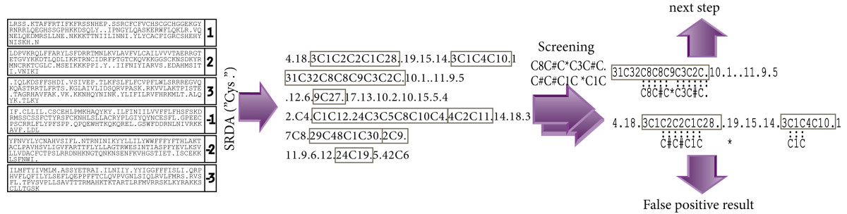 http://static-content.springer.com/image/art%3A10.1186%2F1471-2164-12-88/MediaObjects/12864_2010_3218_Fig3_HTML.jpg