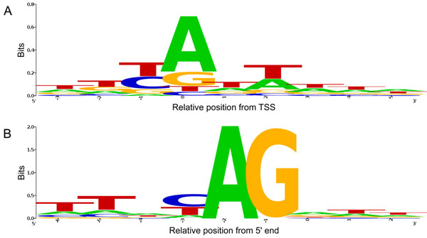 http://static-content.springer.com/image/art%3A10.1186%2F1471-2164-12-S3-S7/MediaObjects/12864_2011_3697_Fig1_HTML.jpg