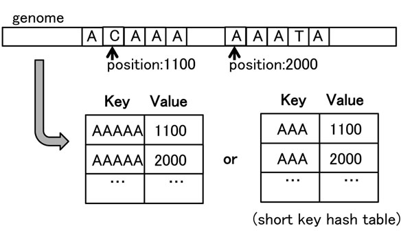 http://static-content.springer.com/image/art%3A10.1186%2F1471-2164-12-S3-S8/MediaObjects/12864_2011_3698_Fig4_HTML.jpg