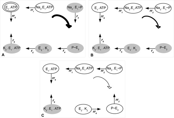 http://static-content.springer.com/image/art%3A10.1186%2F1471-2164-12-S4-S14/MediaObjects/12864_2011_3757_Fig5_HTML.jpg