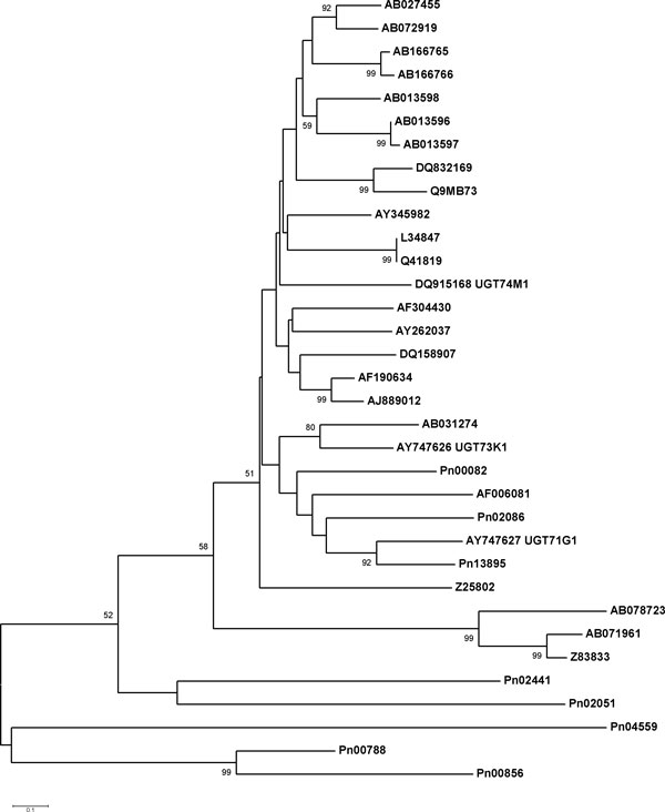 http://static-content.springer.com/image/art%3A10.1186%2F1471-2164-12-S5-S5/MediaObjects/12864_2011_3764_Fig6_HTML.jpg