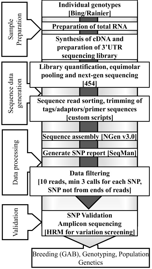 http://static-content.springer.com/image/art%3A10.1186%2F1471-2164-13-18/MediaObjects/12864_2011_3883_Fig1_HTML.jpg