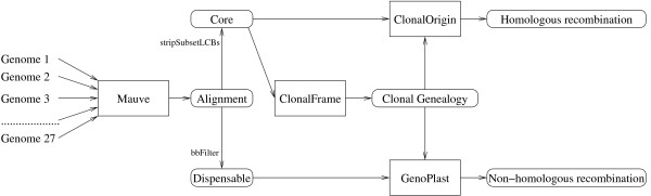 http://static-content.springer.com/image/art%3A10.1186%2F1471-2164-13-256/MediaObjects/12864_2012_4371_Fig1_HTML.jpg