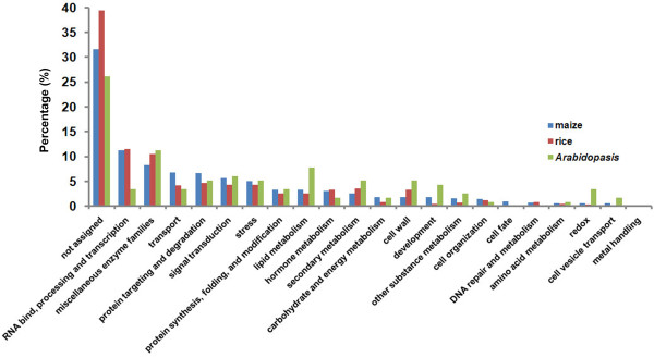 http://static-content.springer.com/image/art%3A10.1186%2F1471-2164-13-294/MediaObjects/12864_2012_4077_Fig4_HTML.jpg