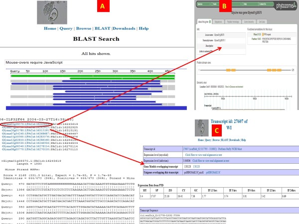 http://static-content.springer.com/image/art%3A10.1186%2F1471-2164-13-303/MediaObjects/12864_2012_4553_Fig4_HTML.jpg
