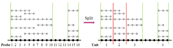 http://static-content.springer.com/image/art%3A10.1186%2F1471-2164-13-342/MediaObjects/12864_2012_4112_Fig1_HTML.jpg