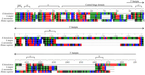 http://static-content.springer.com/image/art%3A10.1186%2F1471-2164-13-390/MediaObjects/12864_2012_4555_Fig4_HTML.jpg