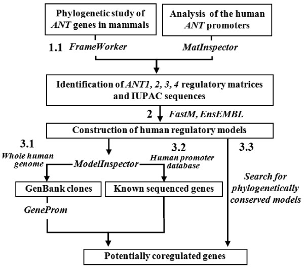 http://static-content.springer.com/image/art%3A10.1186%2F1471-2164-13-482/MediaObjects/12864_2012_4271_Fig1_HTML.jpg