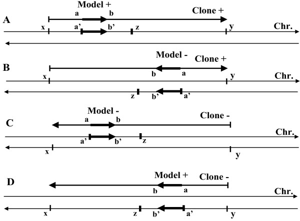 http://static-content.springer.com/image/art%3A10.1186%2F1471-2164-13-482/MediaObjects/12864_2012_4271_Fig7_HTML.jpg