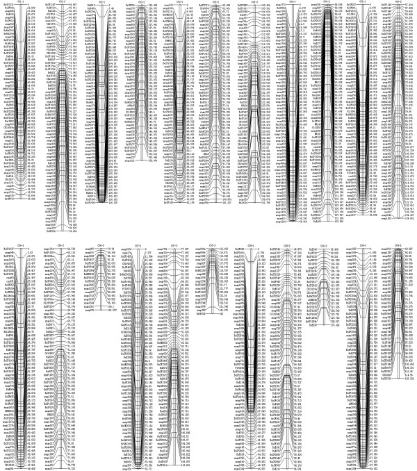 http://static-content.springer.com/image/art%3A10.1186%2F1471-2164-13-523/MediaObjects/12864_2012_4560_Fig2_HTML.jpg