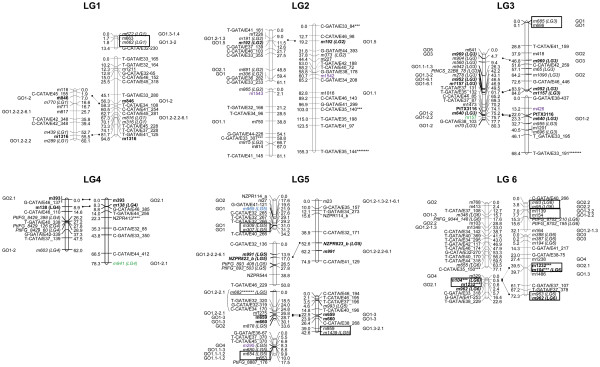 http://static-content.springer.com/image/art%3A10.1186%2F1471-2164-13-527/MediaObjects/12864_2012_4510_Fig1_HTML.jpg