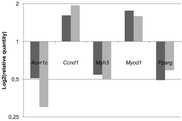 http://static-content.springer.com/image/art%3A10.1186%2F1471-2164-13-541/MediaObjects/12864_2011_4740_Fig8_HTML.jpg