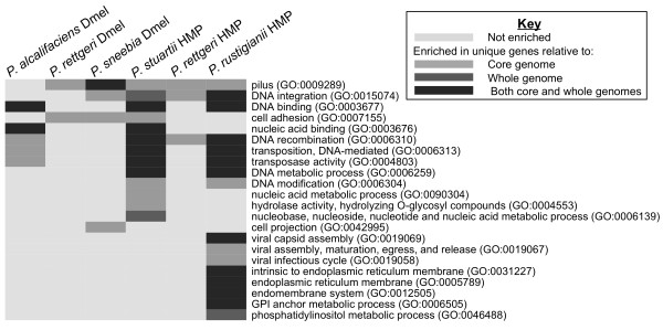 http://static-content.springer.com/image/art%3A10.1186%2F1471-2164-13-612/MediaObjects/12864_2012_4570_Fig9_HTML.jpg