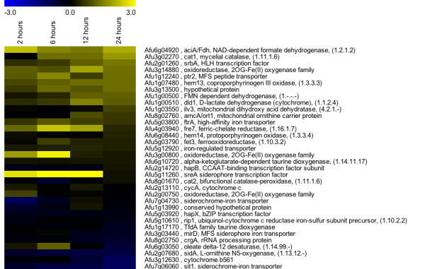 http://static-content.springer.com/image/art%3A10.1186%2F1471-2164-13-62/MediaObjects/12864_2011_3887_Fig9_HTML.jpg