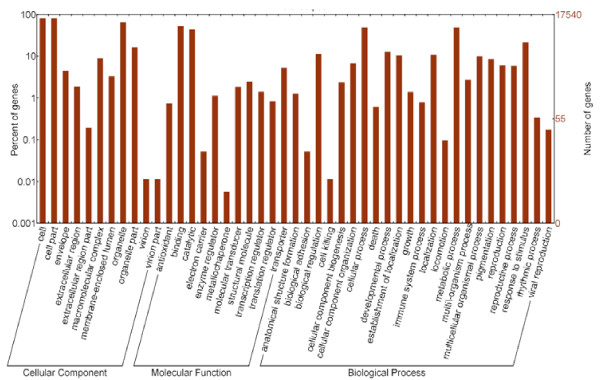 http://static-content.springer.com/image/art%3A10.1186%2F1471-2164-13-650/MediaObjects/12864_2012_4521_Fig2_HTML.jpg