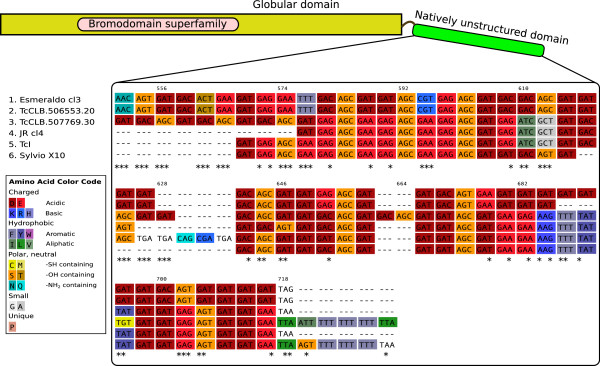 http://static-content.springer.com/image/art%3A10.1186%2F1471-2164-13-736/MediaObjects/12864_2012_4598_Fig1_HTML.jpg