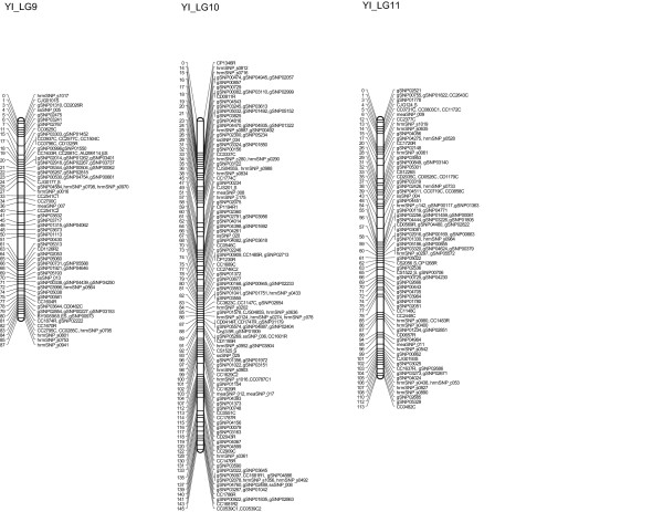 http://static-content.springer.com/image/art%3A10.1186%2F1471-2164-13-95/MediaObjects/12864_2011_4038_Fig4_HTML.jpg