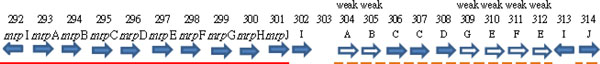 http://static-content.springer.com/image/art%3A10.1186%2F1471-2164-13-S7-S4/MediaObjects/12864_2012_4414_Fig2_HTML.jpg